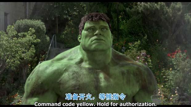 绿巨人免费高清电影BT种子_绿巨人浩克出击