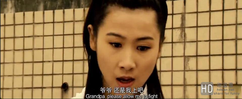 [2013][中国][功夫世家 Gong Fu Shi Jia][DVD/MKV/迅雷电影下载]