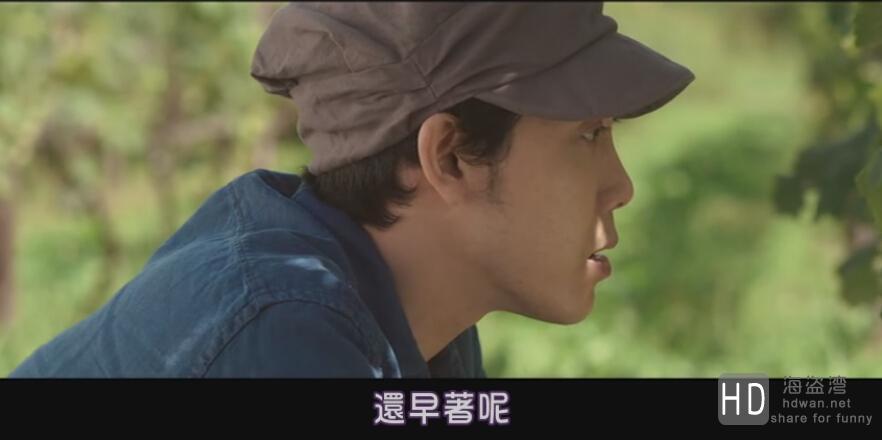 [2014][日本][剧情][葡萄的眼泪][MP4/1.33G][日语中字][720P]