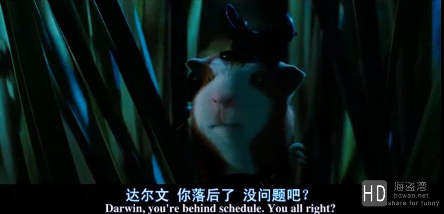 [2009][欧美][动画][豚鼠特工队/豚鼠特攻队/鼠胆妙算][BD-R/0.8GB][中英双字]