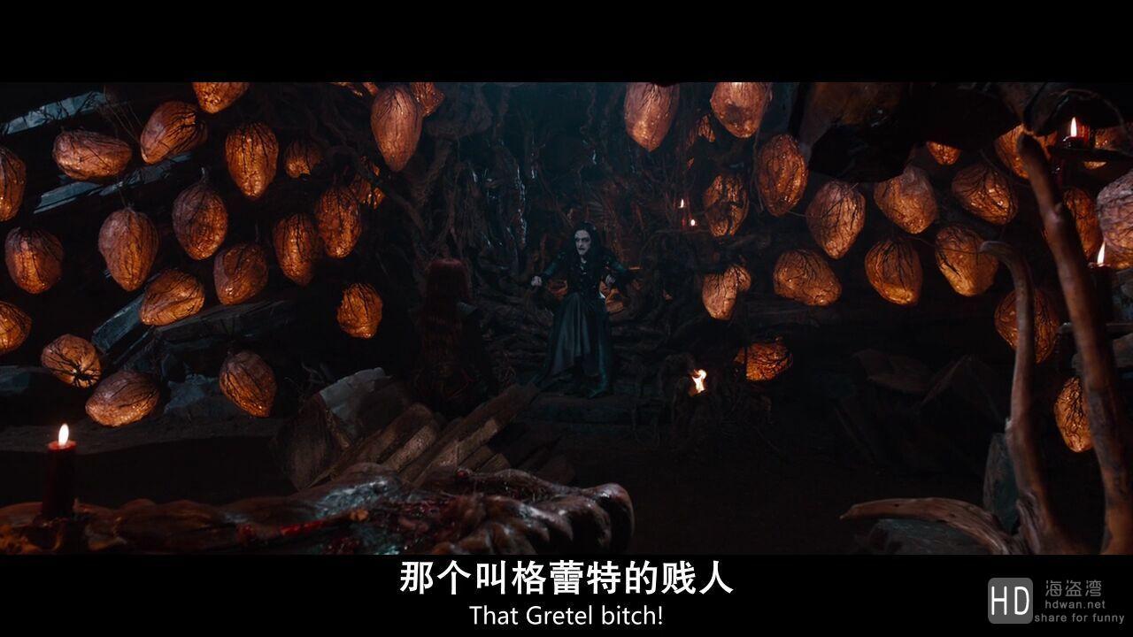 [韩赛尔与格蕾特:女巫猎人 Hansel and Gretel: Witch Hunters][2013][欧美][科幻][BD-MKV/2.1G][国英双语/中英双字]