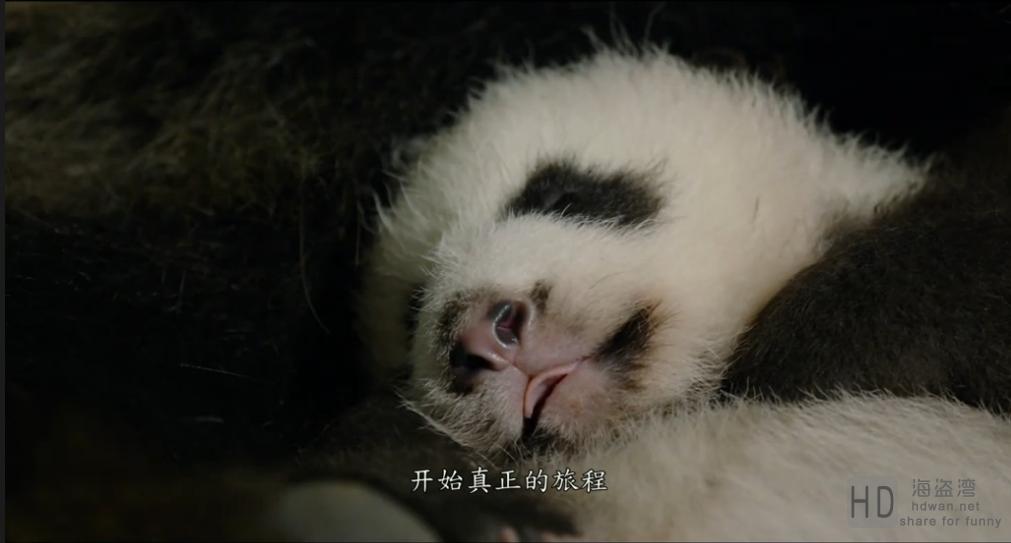 [我们诞生在中国][2016][大陆][纪录][HD-MKV/1.78G][中文字幕][1080P]