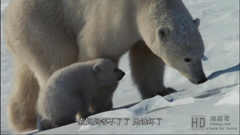 [北极故事/北极传说][2007][欧美][纪录][BD-MP4/2.01G][英语中字][1080P]