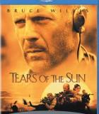 太阳之泪_太阳之泪高清BT种子