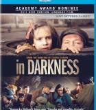 黑暗弥漫免费电影高清种子_下水道的无光岁月