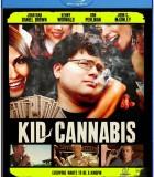 [吸大麻的孩子][BluRay-720P.MKV][2.8G][BT种子][中英字幕]
