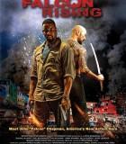 猎鹰突起 Falcon Rising (2014)