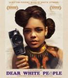[2014][美国][亲爱的白人们 Dear White People][DVD/MKV/BT电影下载]