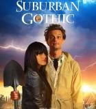 [2014][美国][喜剧/恐怖][阴森小镇 Suburban Gothic][无字幕]