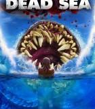[2014][欧美][恐怖/科幻/悬疑/冒险][死海 Dead.Sea][BD-720P/4.37GB]