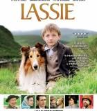 [2005][英国/法国/美国][剧情/冒险][新灵犬莱西][DVD-RMVB-413.78MB][中文字幕]
