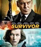 [幸存者/Survivor][欧美][2015][动作/惊悚][英语中字][HD720P-MKV/1.1GB]