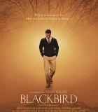 [黑鸟][2014][欧美][剧情][BD-MP4/1.91G][外挂中英字幕][1080P]