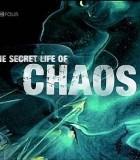 [BBC神秘的混沌理论][2009][欧美][纪录][HD-MKV-865MB][中英字幕][720P]
