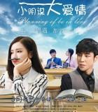 [小阴谋大爱情][2017][大陆][爱情][HD-MP4/1.36G][国语中字][720P]