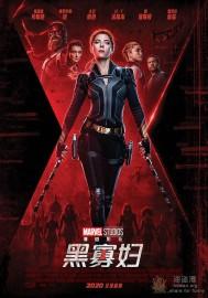 [黑寡妇 Black Widow][美国][动作 / 科幻 / 冒险][BD双语中字][BT下载/迅雷下载]